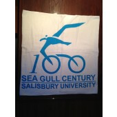 2013 SGC Beach Towel