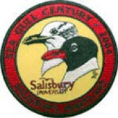Sea Gull Century Patch (2004)