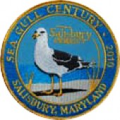 Sea Gull Century Patch (2010)