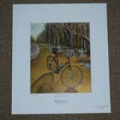 Sea Gull Century Print (2009) - Super Course